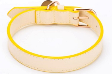 New design-Classical quality pet collars leash/dog collar
