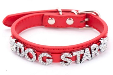 DIY Real leather dog collars leashes with bling bling /Pet products