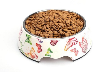 Butterfly Pattern Melamine&Stainless Steel Pet Dog Food Bowl