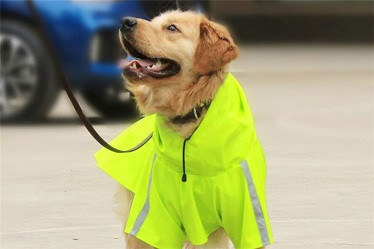 dog reflective raincoat/pet raincoat dog clothes in raining
