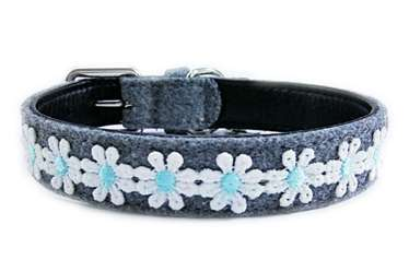 Daisy dog cat collars for small medium pets